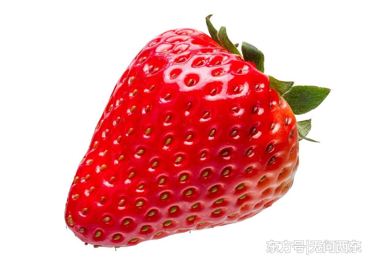 """""""草莓藏针案""""扩散到新西兰 农户担心恐慌扩散影响收益"""