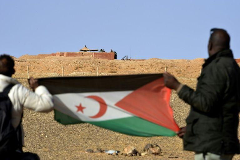Renewed push for peace as western sahara talks open in geneva