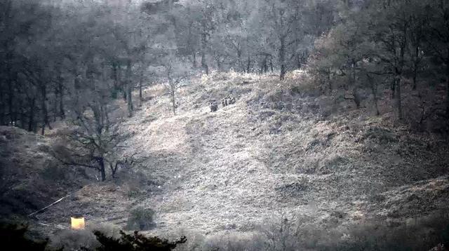 史无前例!朝韩现役军人将互访前沿哨所检查拆除情况