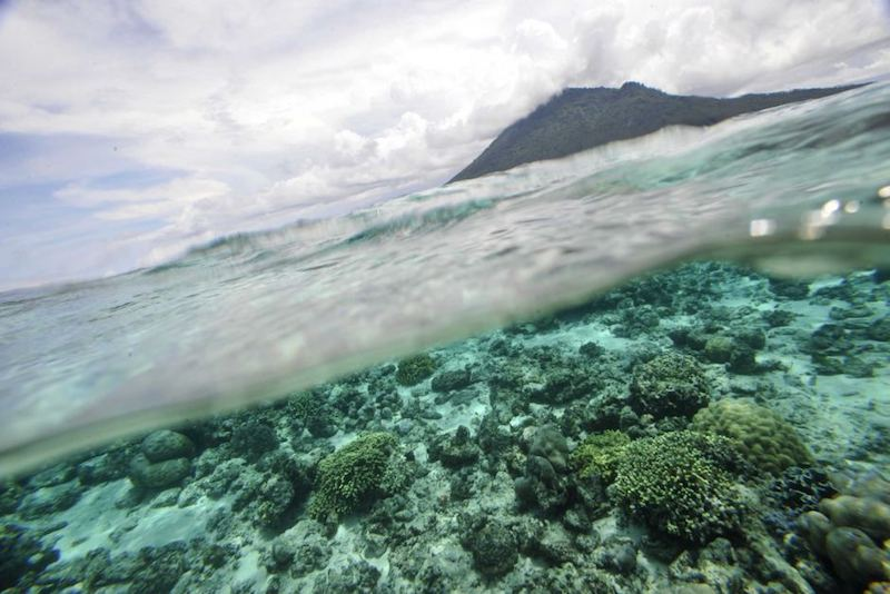 Study says world's oceans are heating up at a quickening pace