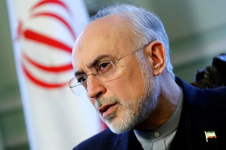 Iran could enrich uranium to 20 percent within 4 days: atomic chief