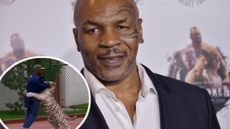Mike Tyson Tells Joe Rogan Why He Got His Pet Tigers