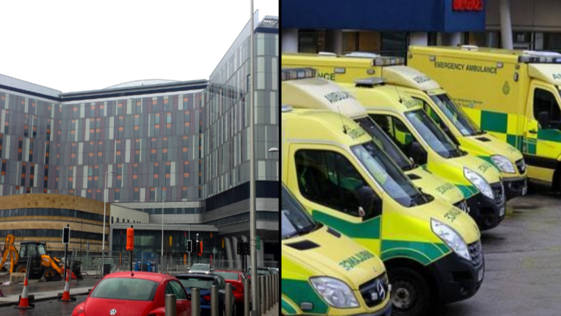 Two Dead Following Pigeon Poo Infection At Glasgow Hospital