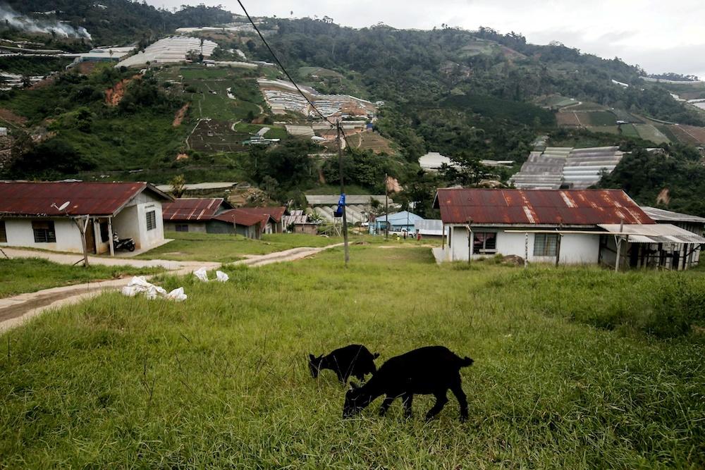 Customary land rights main resolution for Orang Asli community