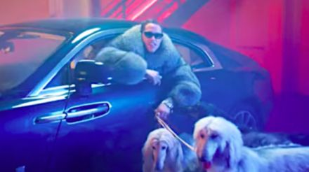 Go dogs: barking mad 'snl' cast gushes over puppy love in rap video