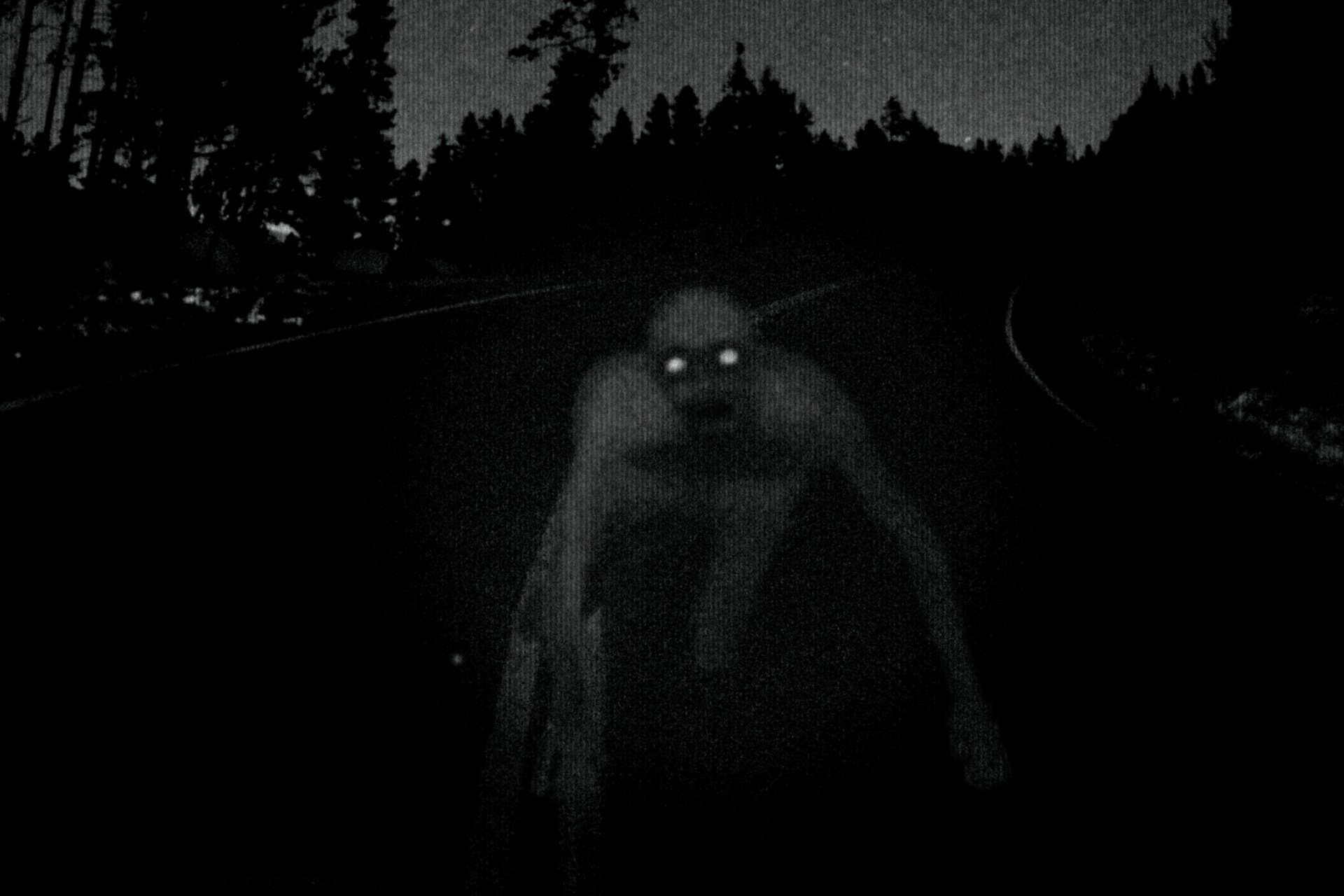 12 Creepy Facts About The DoverDemon