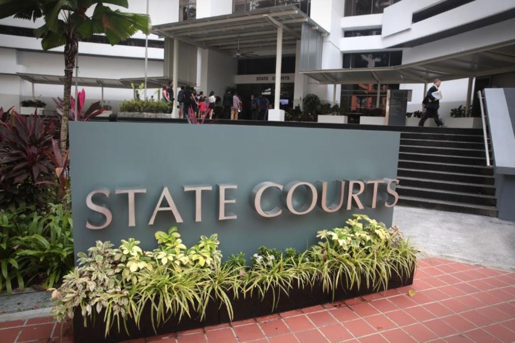 Malaysian teen charged in Singapore with allegedly molesting three women, including two senior citizens