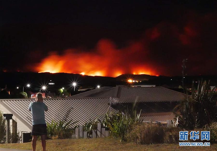 新西兰南岛北部因山火进入紧急状态