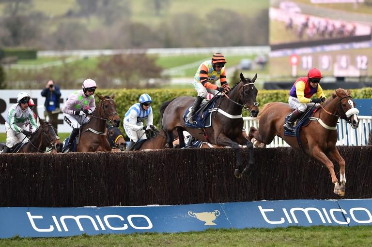 英国马流感疫情爆发 当局取消全国赛马活动