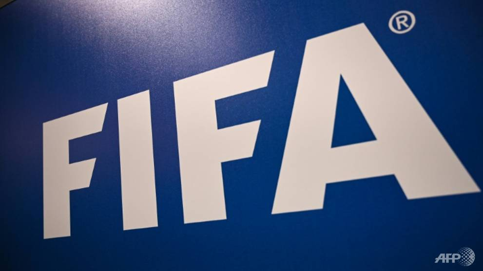 Football: FIFA urged to probe Qatar World Cup allegations