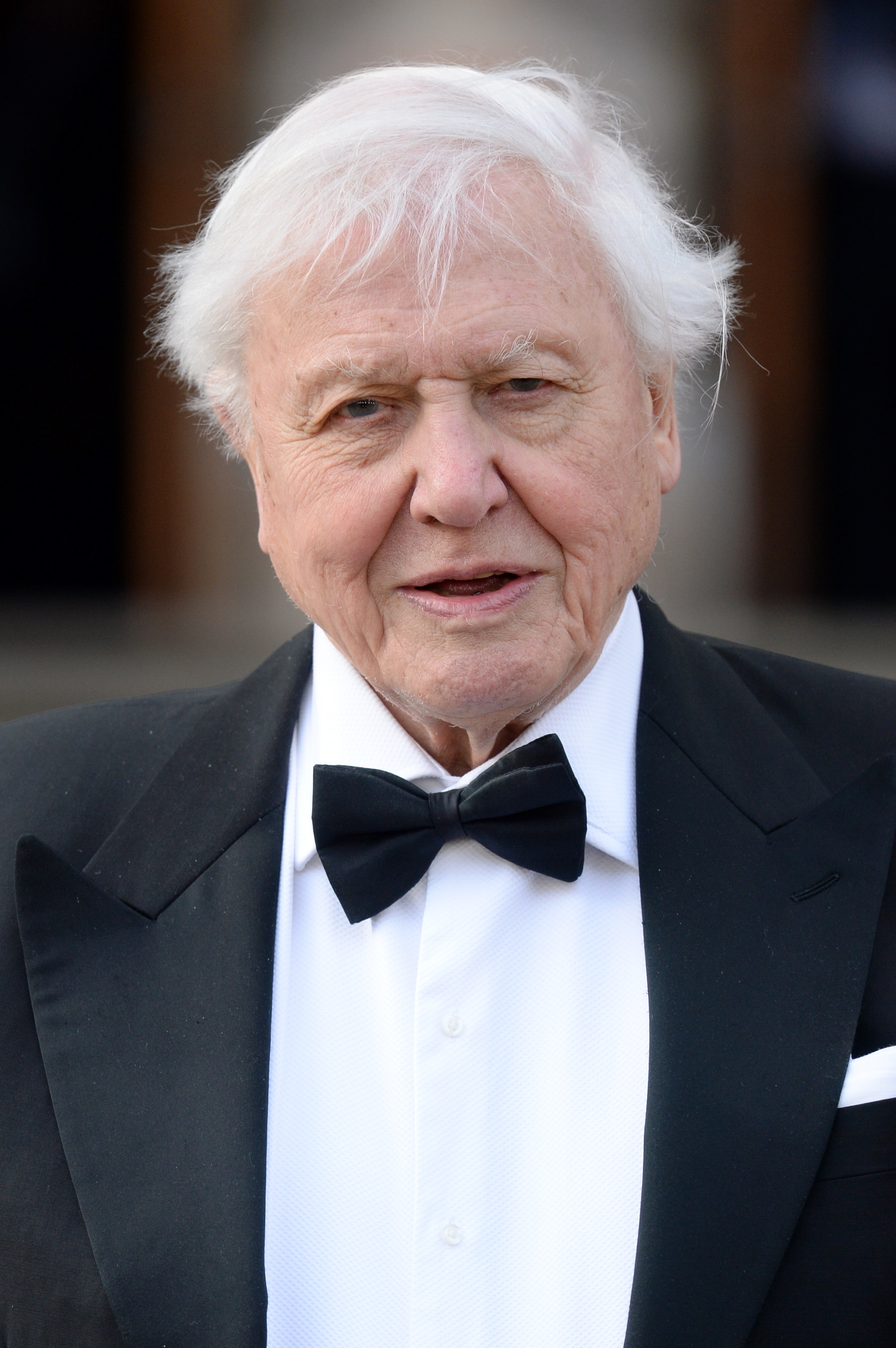 David Attenborough Is Making A Foray Into EDM Music At The Tender Age Of 93