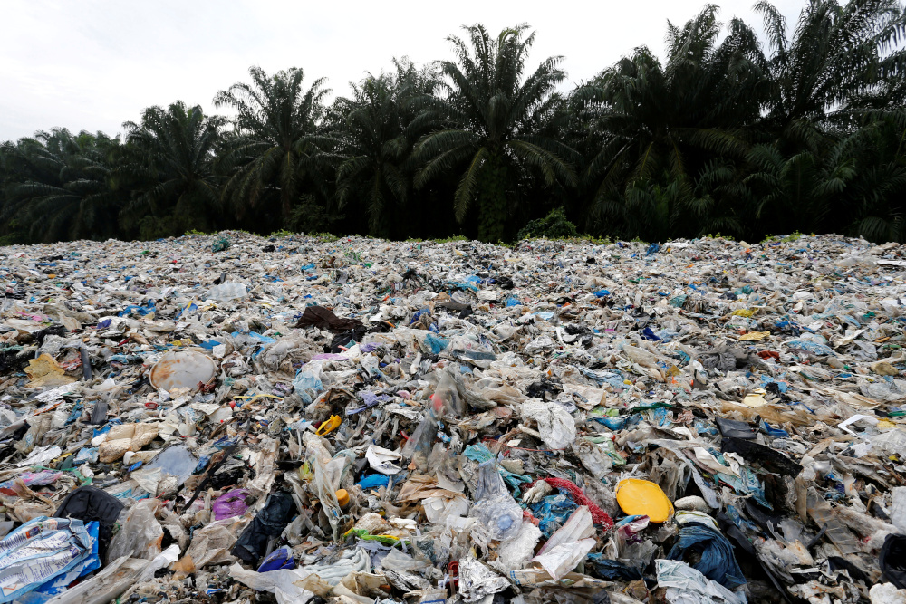 Mestecc committed to addressing environment, climate change issues