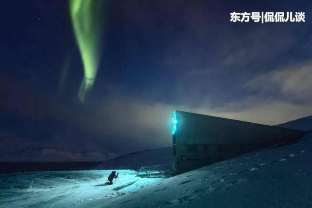 这个地方狗熊比人类还多,没有白天黑夜,却是人类文明最后的希望