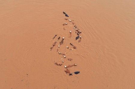 China flood death toll hits 61, 350,000 evacuated - ministry