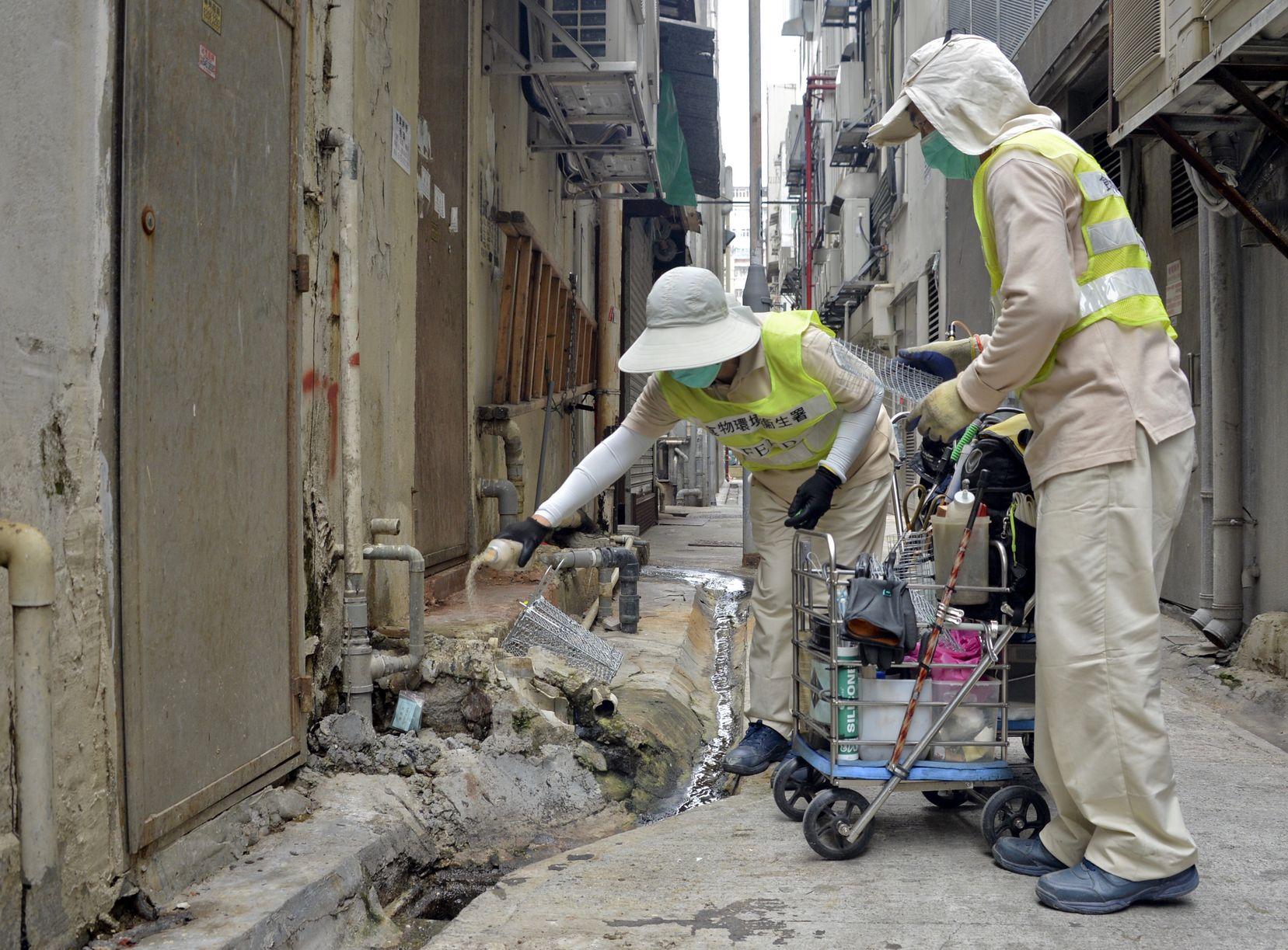 食环署明年5月及11月续推小区灭鼠 研热能探测监察老鼠九龙城试行
