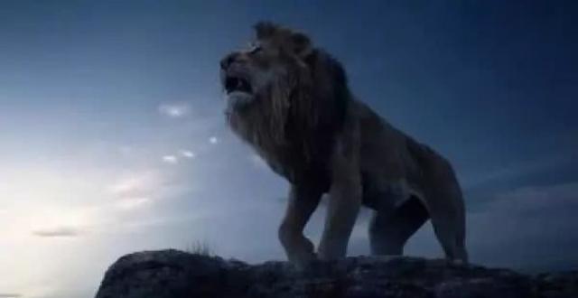 新《狮子王》观影经历简直是一场灾难