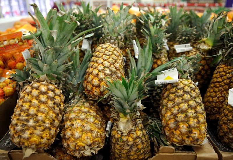 DSTE Capital Limited plants first batch of MD2 pineapples in Kedah