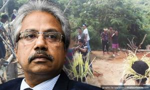 Let Orang Asli bring out forest products, SADC urged