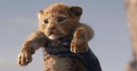 《狮子王》新旧版对比:迪士尼轻松画一部动物影片骗你这是纪录片