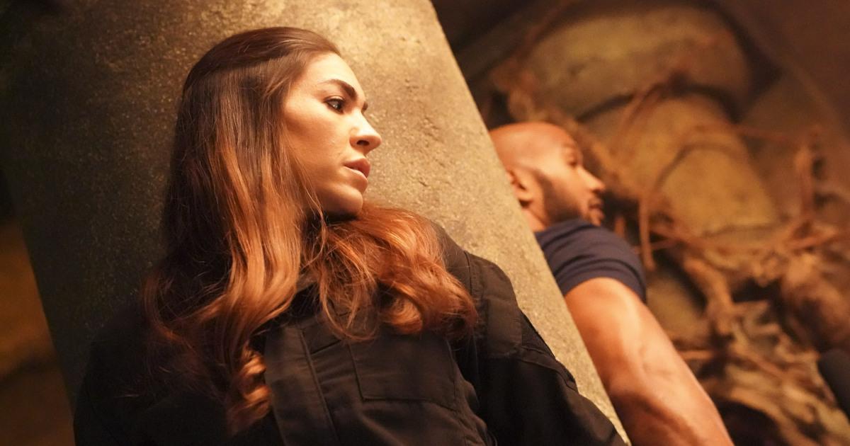 Agents of S.H.I.E.L.D. recap: Was I you? Were you me?