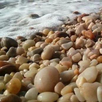 在山东这个地方捡石头,最高罚两万