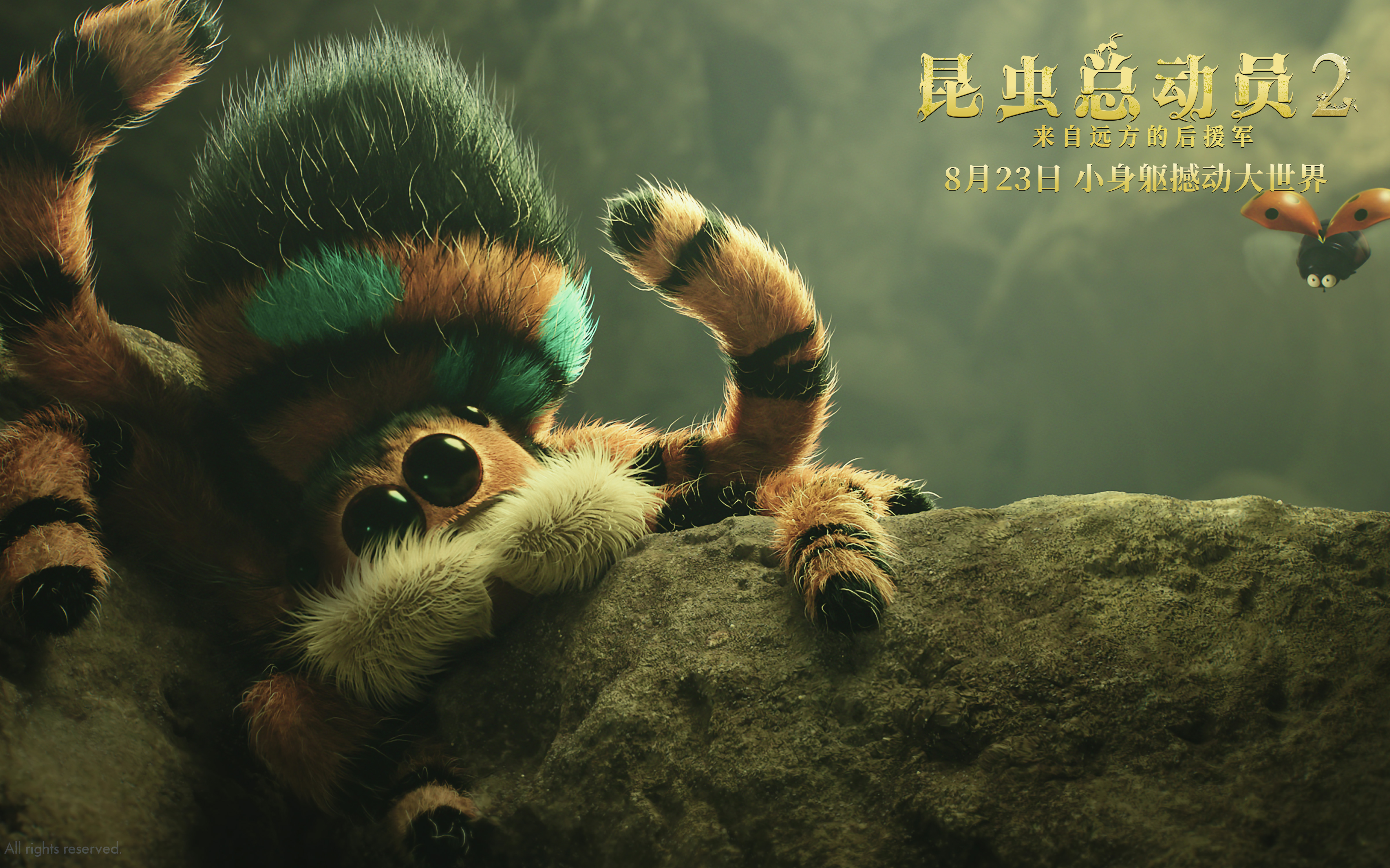 动画《昆虫总动员2》发推广曲MV 实景+CG打造微观世界