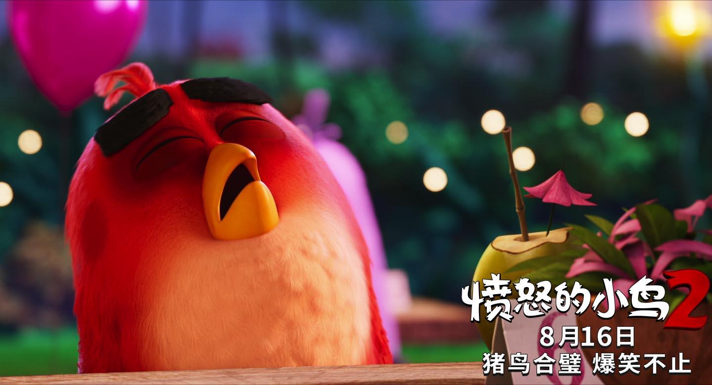 """《愤怒的小鸟2》明日上映揭六大看点 """"十年冤家""""猪鸟首度联手"""