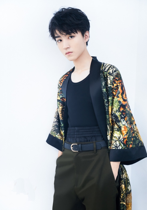 王俊凯是娱乐圈里腿最直的男生吧?完全就是按筷子形状长的,服了