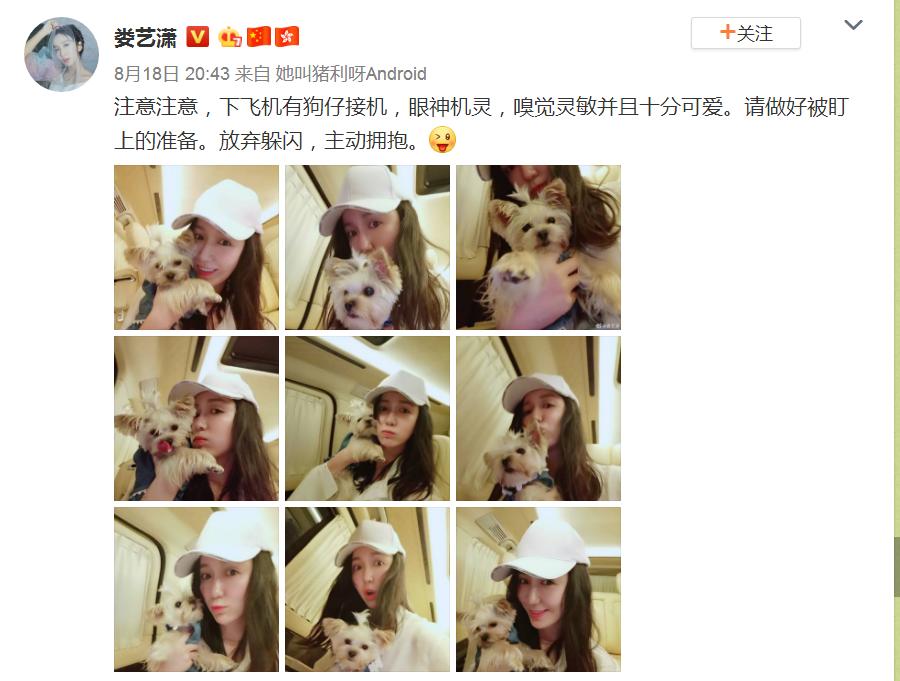 娄艺潇官宣演员表,谁注意她怀中抱的啥?网友:耐不住激动的心!
