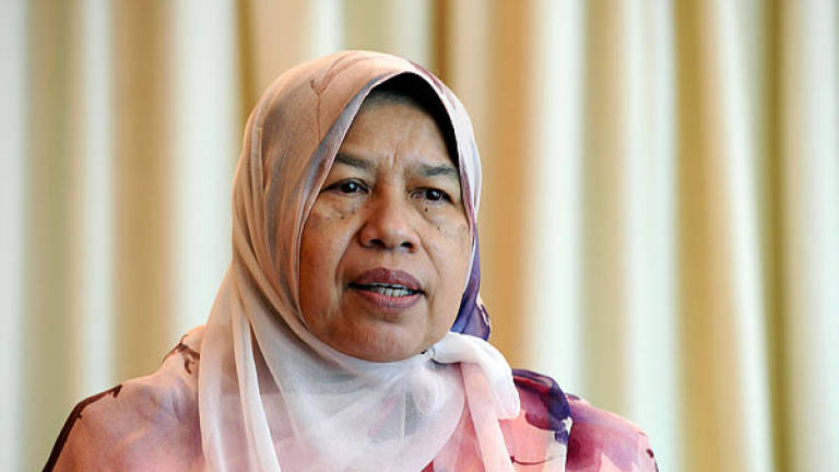 PH to tap experience of mother of late MP in Tg Piai