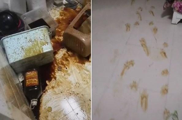 回家惊现「凶案现场」 厨房满布酱油真凶原来是…