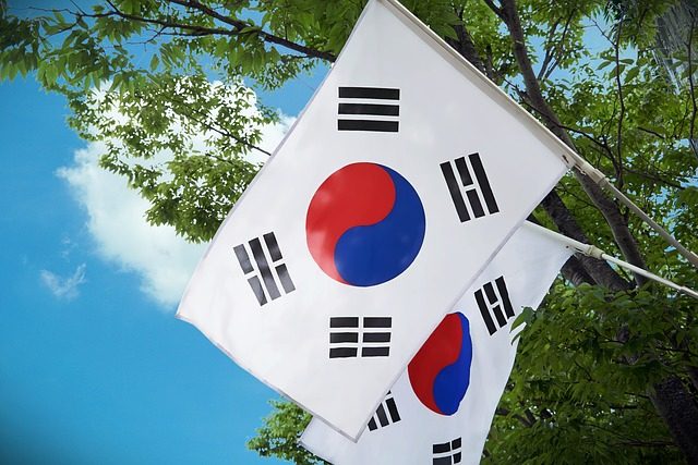 Gangnam smile: North Korean defector wins South Korea's swankiest seat
