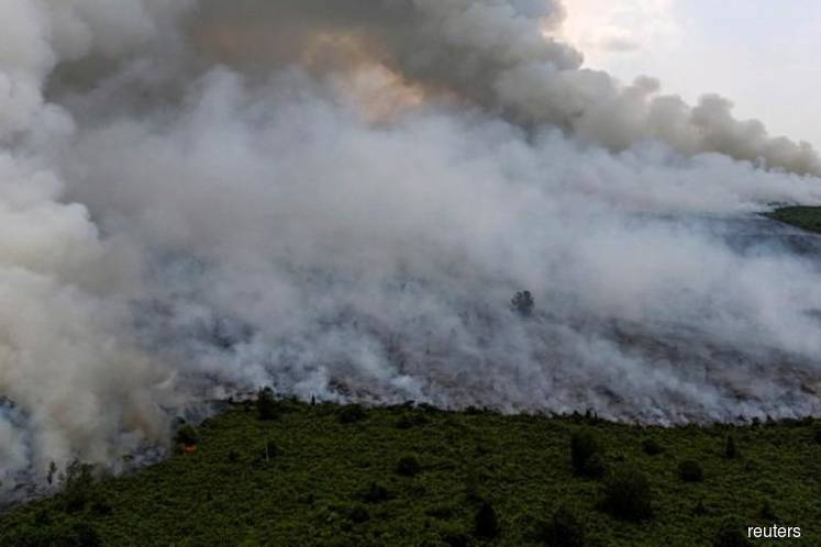 World can do nothing to stop forest fires, laments Dr Mahathir