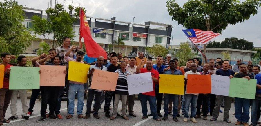 业者吁重新开放乌鲁慕达伐木