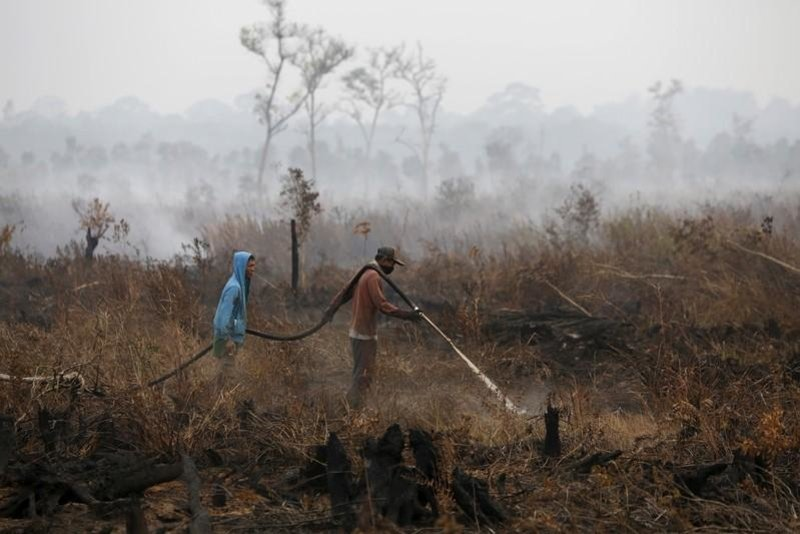 Authorities urged to act against big companies over haze
