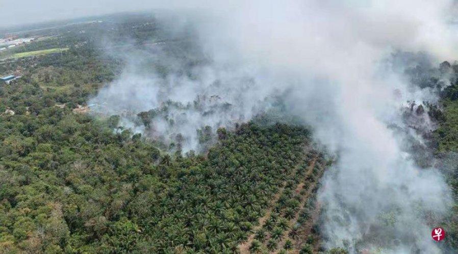 振林山林火由天气干旱引起