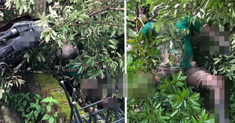 华裔老翁外出失踪3天 被公众发现卧尸草丛