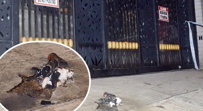 黎智英香港寓所 遭掷汽油弹