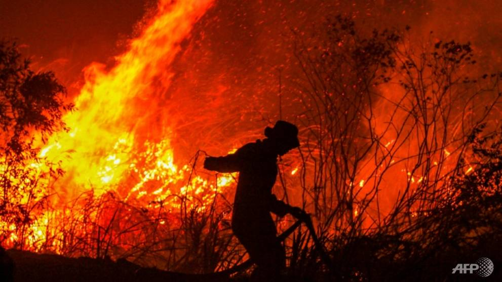 Indonesian province moves to curb slash-and-burn clearances as fires rage