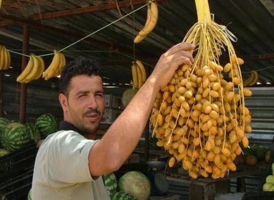"""迪拜土豪最爱的""""水果"""",是财富的象征,却在中国反应很一般!"""