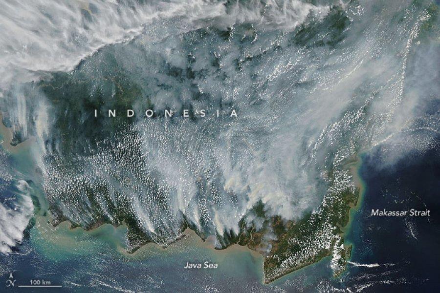 NASA公布印尼烟霾照片显示 严重程度直逼2015年