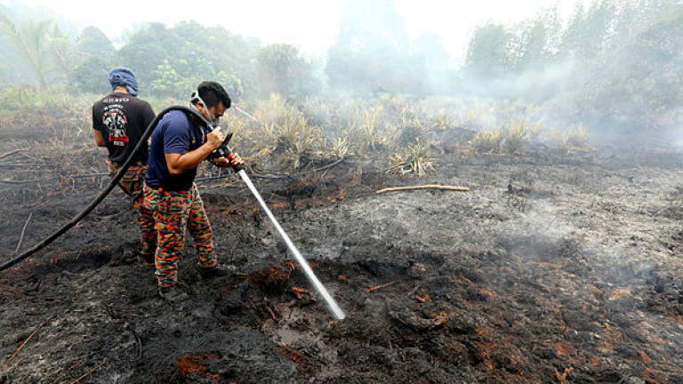 OPS to put out Sri Aman peat fires on Saturday