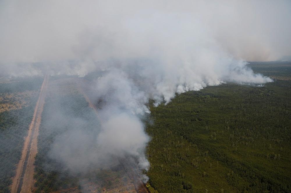 Haze: Evacuated Malaysian students return to Jambi, Pekanbaru in Indonesia