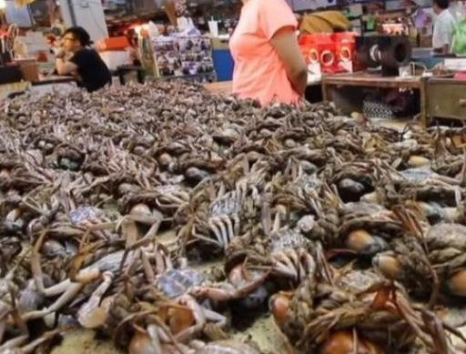 """18岁美女卖""""小螃蟹"""",5元一斤抢着买,内行人:傻子才会吃"""