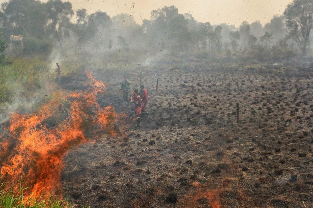 DOE: Increase in number of hotspots in Sumatra, Kalimantan