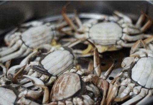 螃蟹蒸好了没蟹黄?海鲜店大厨:原因在于这一步错了,有蟹黄才怪