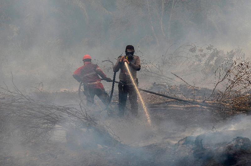 空污破500点· 印尼廖内 紧急状态