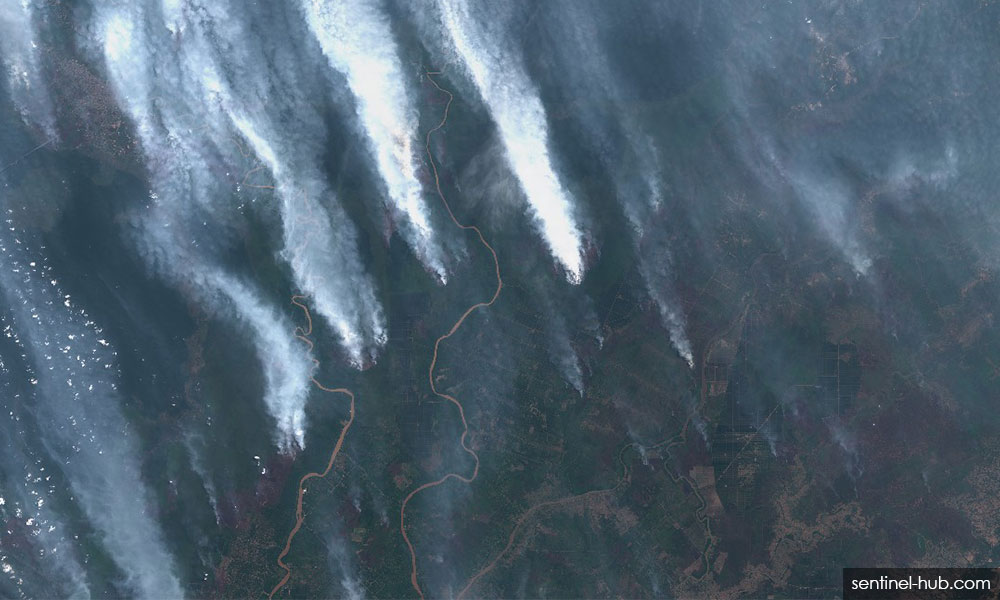 Haze emergency declared in Riau after API exceeds 500