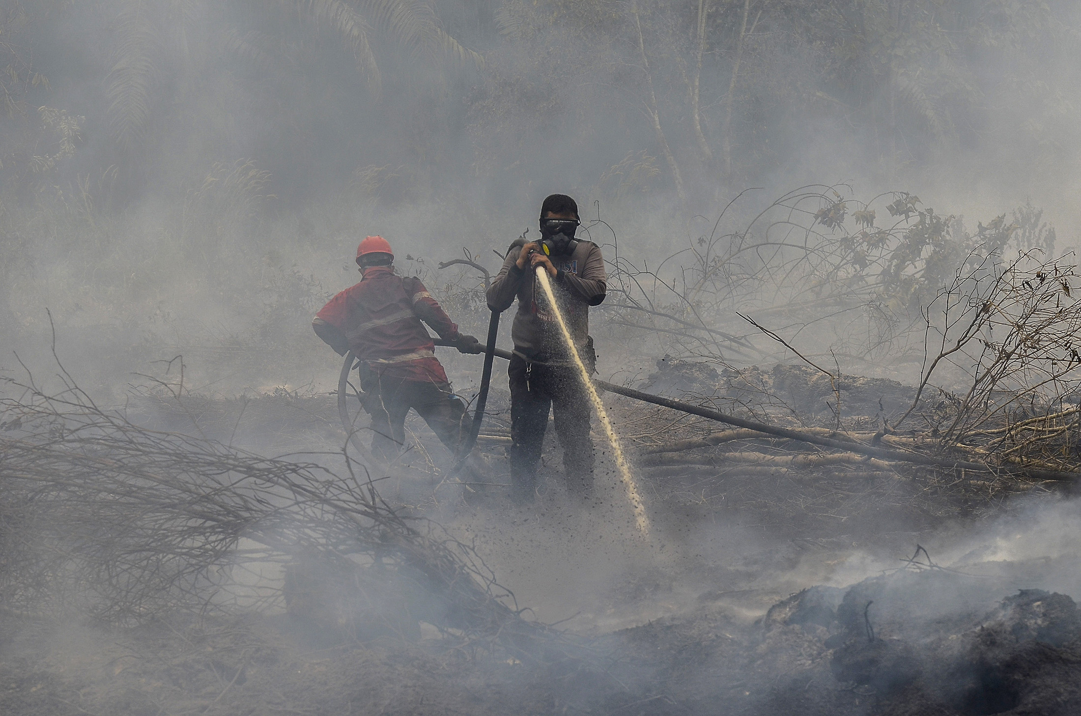 Wildfires in Indonesia Pose Economic Risk, Central Bank Says