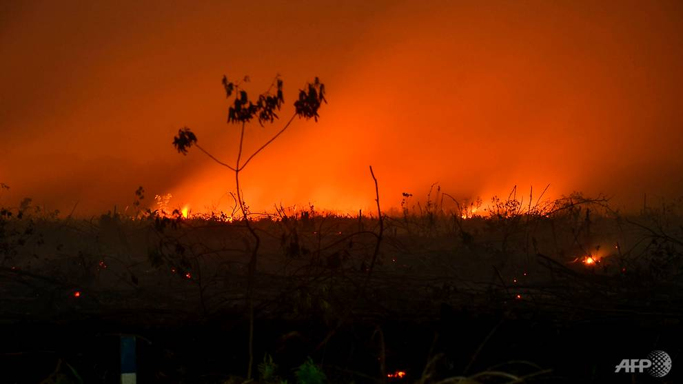 Indonesia forest fires have 'major impact' on climate, 360m tonnes of CO2 released since August: Masagos